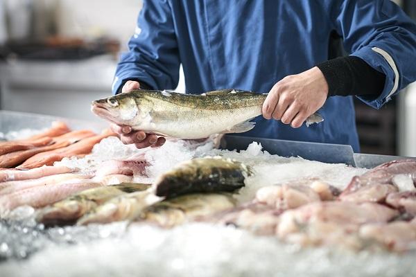 Asparagins-ure-Fisch