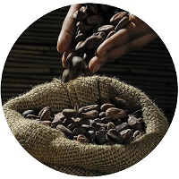 Kakao_klein